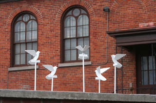 Doves on the Wall